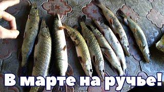 Как ловить щуку в марте апреле на реках и открытых участках воды Рыбалка на щуку ранней весной