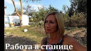 Кому в Гостагаевской жить хорошо. О работе
