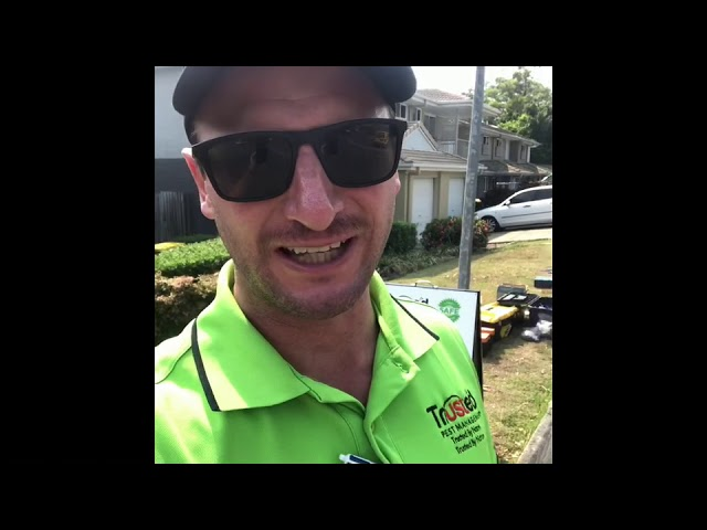 Highlights of a 3 day Termite Treatment using Termidor as termite protection