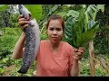Awesome Cooking Fish With Noni Leaves Recipes -Cooking Fish Recipe -Village Food Factory -Asian Food