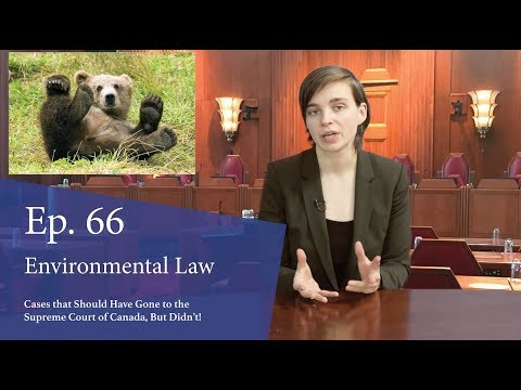 Environmental Law: Cases That Should Have Gone to the Supreme Court of Canada, But Didn't!