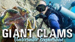 Camiguin Island CLAM SANCTUARY | Philippines Travel Vlog 2018