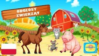 Odgłosy Zwierząt dla Dzieci - Zwierzęta dla dzieci po polsku