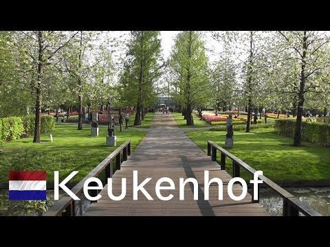HOLLAND: Keukenhof - world's largest flower garden [HD]
