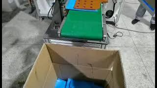 2D마스크 자동포장기