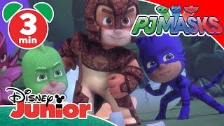 PJ Masks | Magical Moment: Is Armadylan A Baddie? ✨ | Disney Junior UK