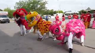 St. Andrew Dũng-Lạc Lion Dance @World Fresh International Market Grand Opening