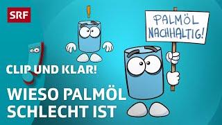 Das Problem mit Palmöl | Clip und klar! – Dein Erklärvideo