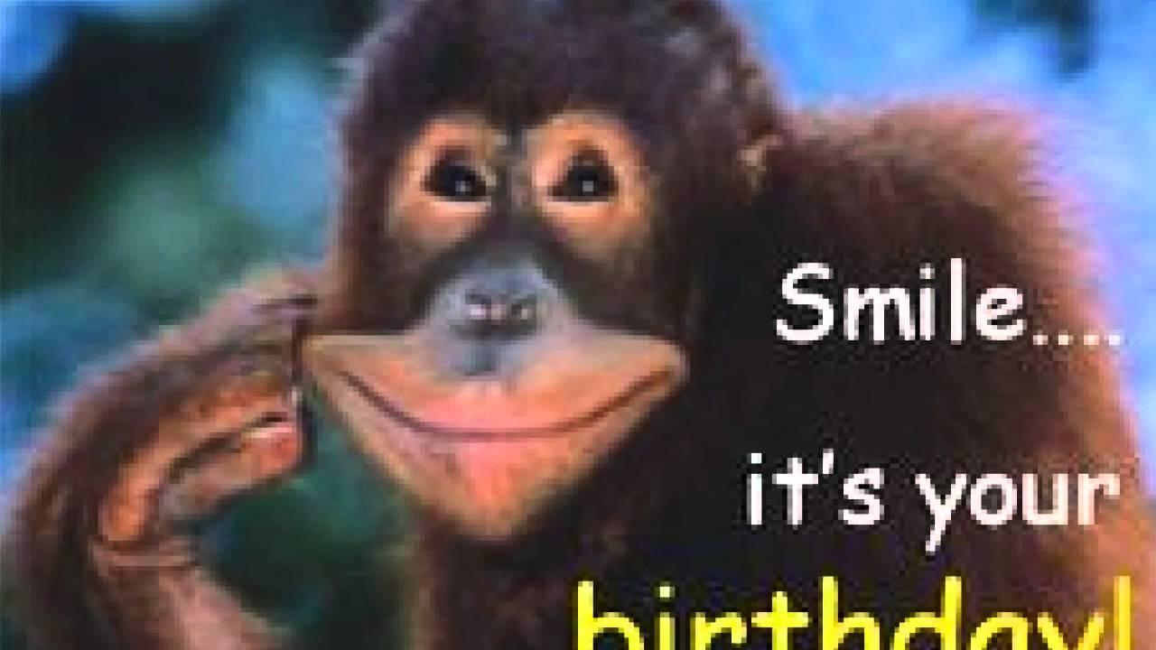 Funny Birthday Quotes Youtube