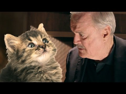 John Cleese's Cat Confessions