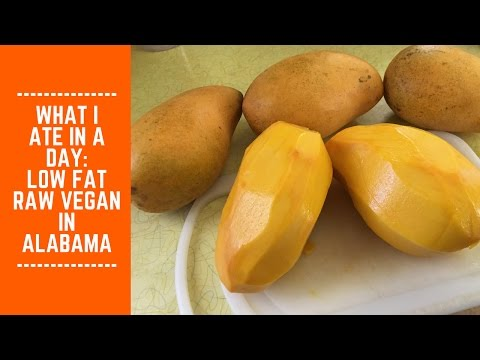 What I Ate in a Day: Low Fat Raw Vegan in Alabama