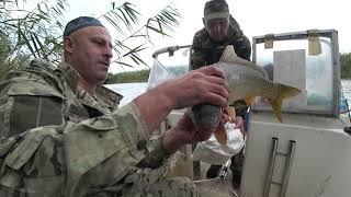 Рыбалка в Астрахани летом 2020 часть 2 Поймали на удочку мышь ремонт генератора