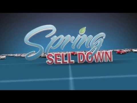 """Roseville Hyundai """"Spring Sell Down"""" Spot"""