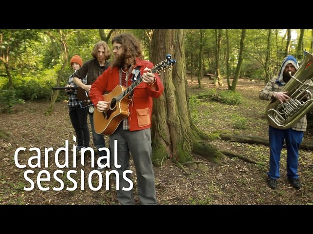 Seth Faergolzia - Doubting Won't Do - CARDINAL SESSIONS