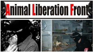 Liberación de Visones.(Animal Liberation Front)