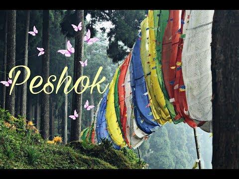 peshok-|-lamahatta-|darjeeling-|-tea-garden-|-episode-1