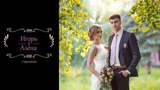 Свадебный клип Игоря и Алёны 08.07.16 ( Почеп ) - Sazonov STUDIO