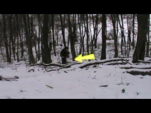 Коп у лісі біля поселення КР Київська область