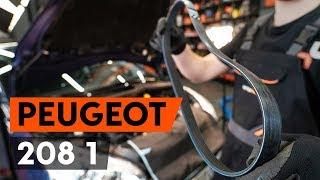 Hoe en wanneer Poly v riem PEUGEOT 208 veranderen: videogids