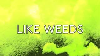MARINA AND THE DIAMONDS - WEEDS (LYRICS)
