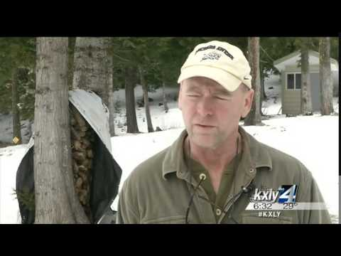 Idaho tickets Rathdrum man after defensive wolf kill
