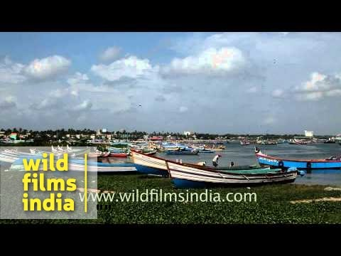 Panoramic view of Kollam fishing port - Kerala