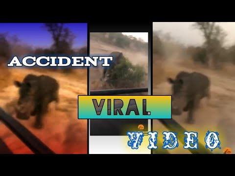 Rhino accident video viral / Viral rhino accident with Safari /this is how you handle a rhino charge