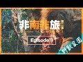 (血腥慎入)直擊獅子廝殺水牛|非南非旅2|Ep 9