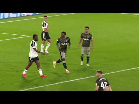 Fulham v Sheffield Wednesday highlights