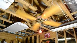 Yes, it's a BRAND NEW ceiling fan video!
