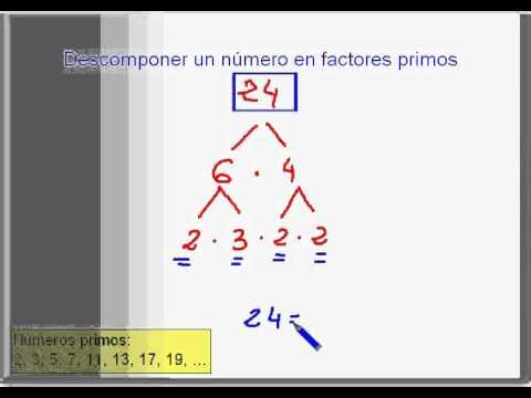 DESCOMPONER EN FACTORES PRIMOS - YouTube
