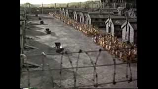 Chicken Run (2000) Trailer (VHS Capture)