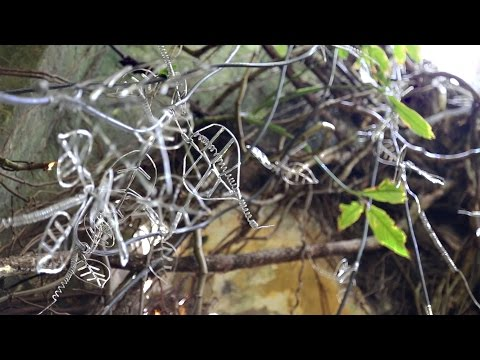 GEORGE CAMILE art project CREEPERS, Seychelles - Documentary Videos - Claire Obscuur