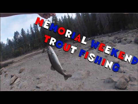 Non Stop Trout, Fishing Huntington Lake CA
