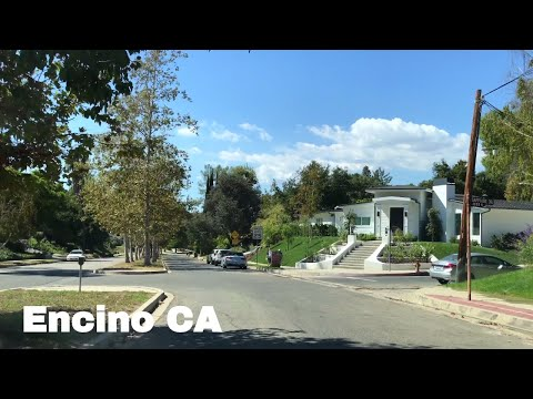 🔴  Encino Realtor Driving Tour 4K