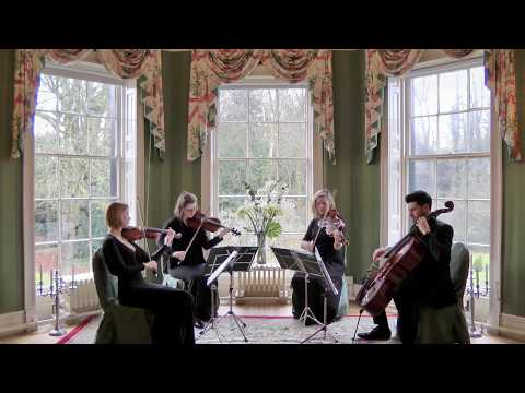 Set Fire To The Rain (Adele) Wedding String Quartet