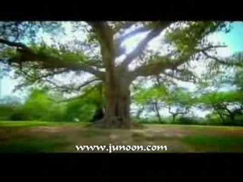 junoon-ghoom-tana-nosheenm