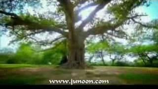 Junoon - Ghoom Tana