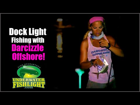 Fishing Dock Lights with Darcie of Darcizzle Offshore!