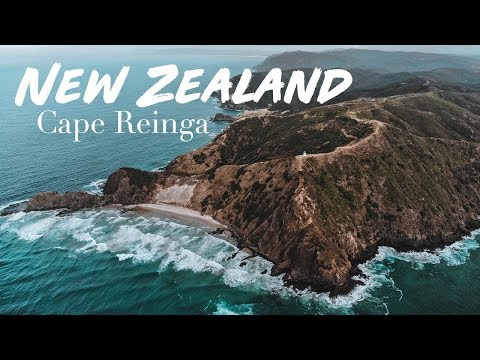 WE ARRIVED IN NEW ZEALAND, NOW WHAT? - VLOG #11