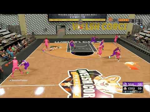 NBA2K KPL WELSH CORGI