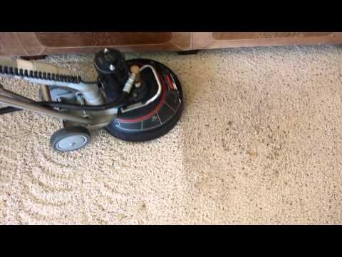Nylon carpet cleaning.