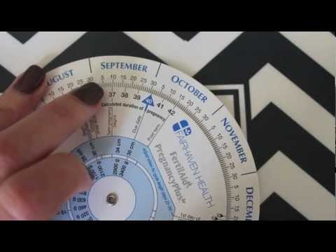 photo about Pregnancy Wheel Printable known as The Interactive Being pregnant Wheel