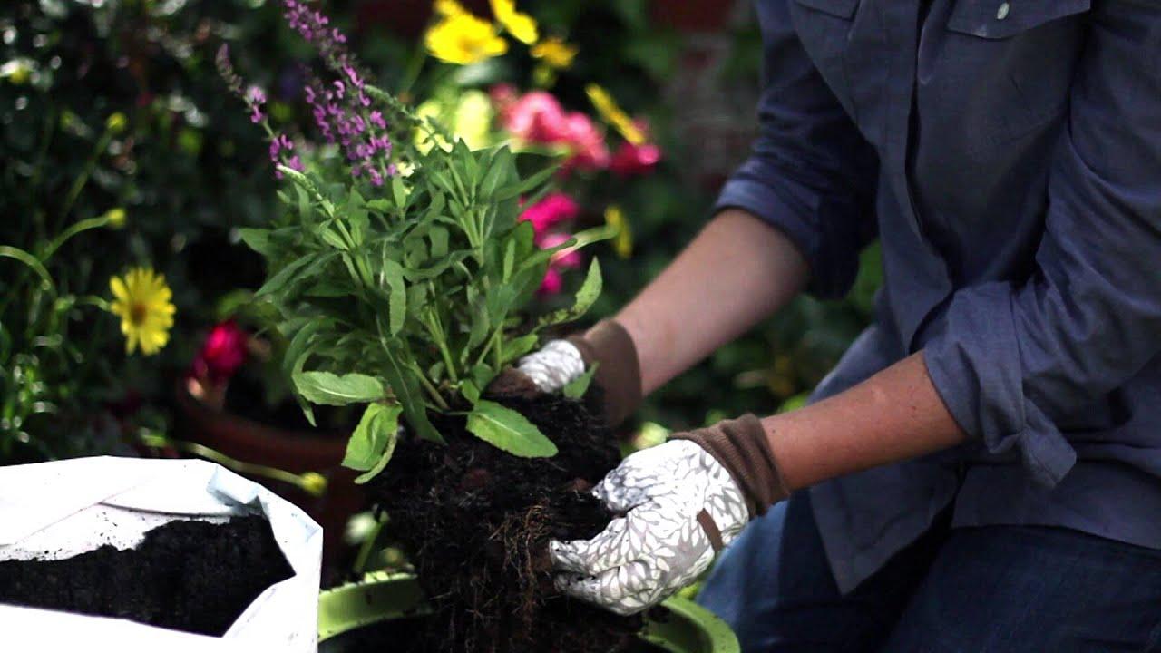 Digz Garden Gloves YouTube