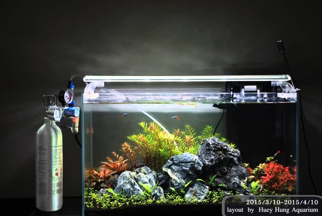 aquarium equipment sun light led