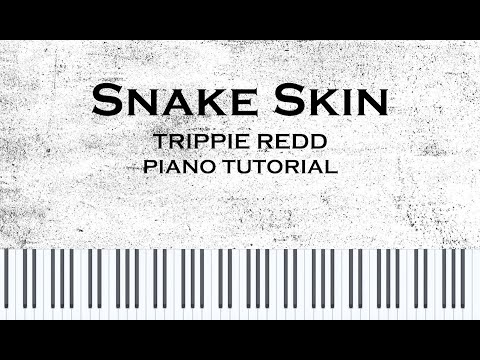 Trippie Redd - Snake Skin (Piano Cover/Tutorial w/ Sheet music) thumbnail