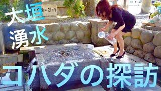 コハダの探訪 おいしい湧水  岐阜県大垣市