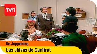 Las chivas de Canitrot | Re Jappening