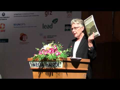 Margareta Wahlström delivers her introductory keynote at CBA6 in Hanoi, Vietnam