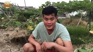 """Ăn Bờ Ngủ Bụi #1: Món độc lạ """"Cua hấp giàn bầu"""" cực kỳ ngon của Khương Dừa!!!"""